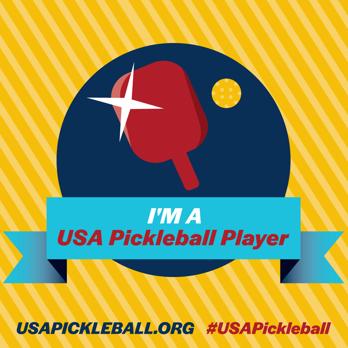 Im a Pickleball Player